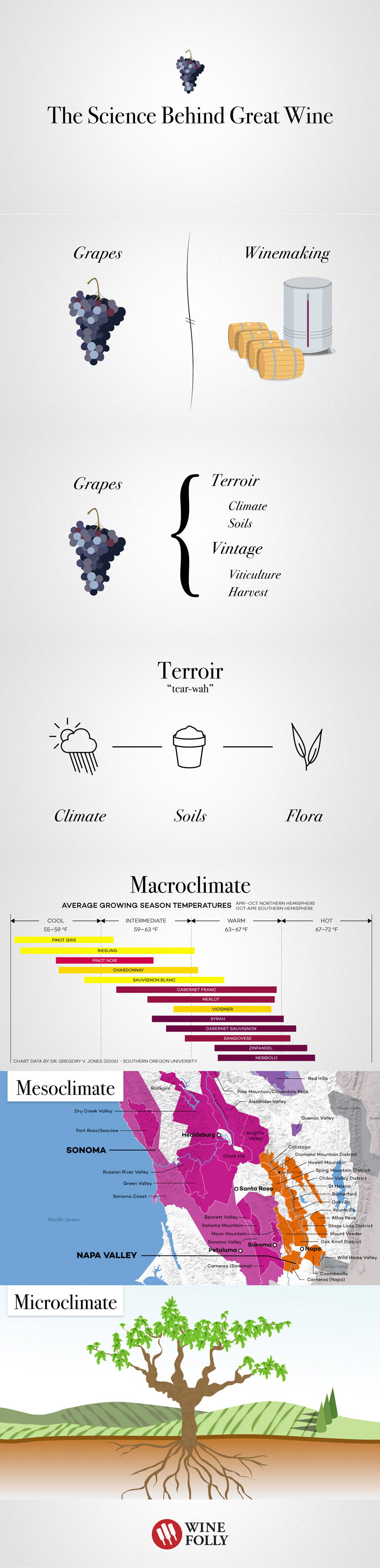 The Science Behind Great Wine - Part 1 by Wine Folly