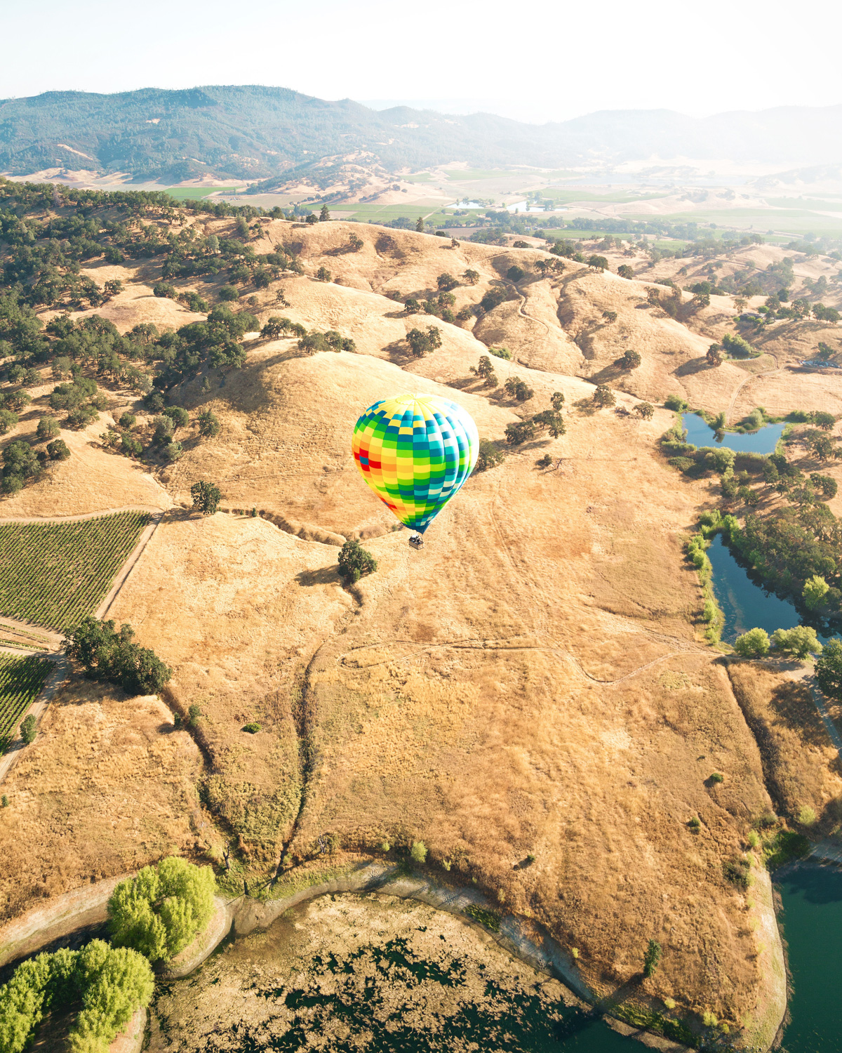 Napa Valley by Air Balloon - view of vineyards - Photo by Sebastien Gabriel