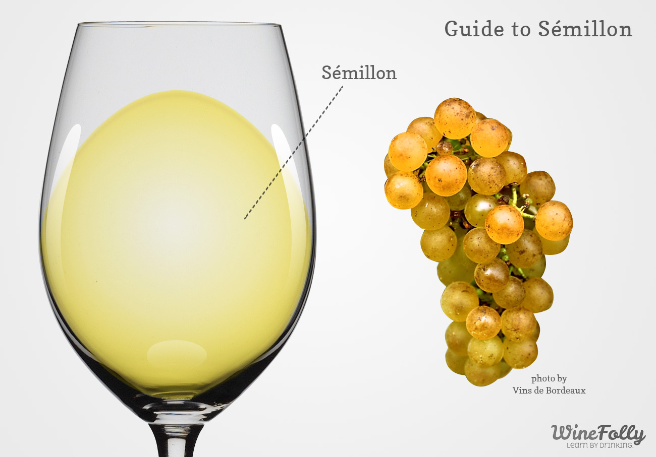 Semillon wine in a glass with grapes
