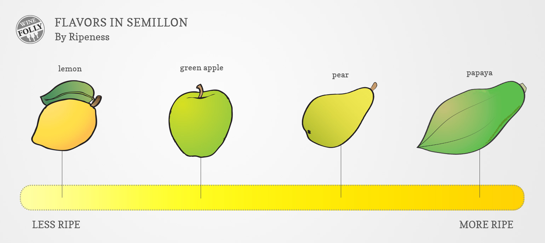 Semillon wine taste chart