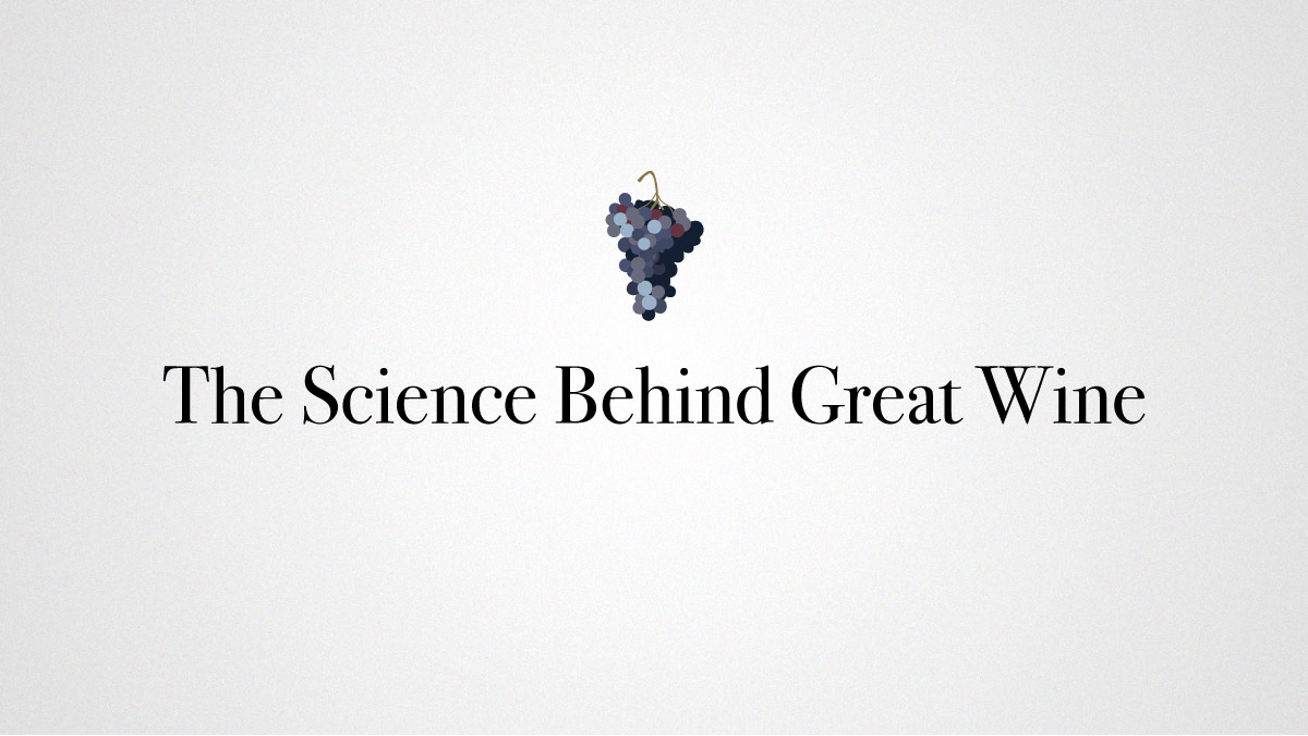 The Science Behind Great Wine