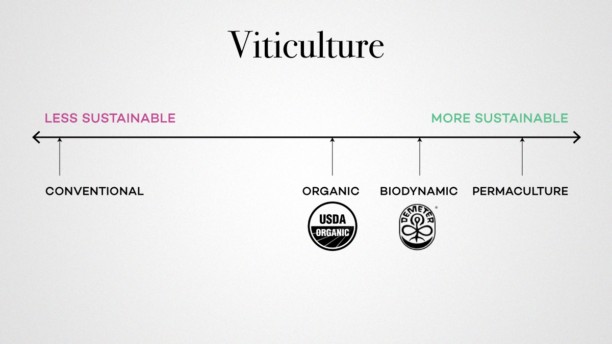 viticulture sustainable