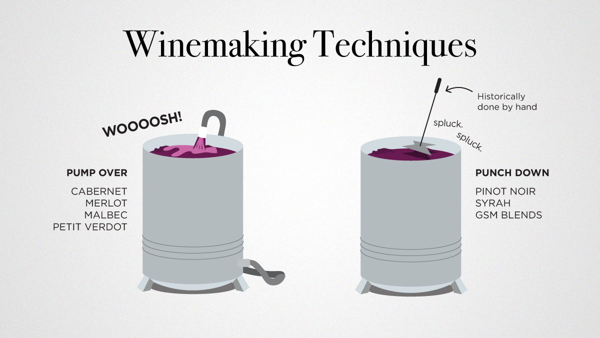 Pump overs and punch downs winemaking