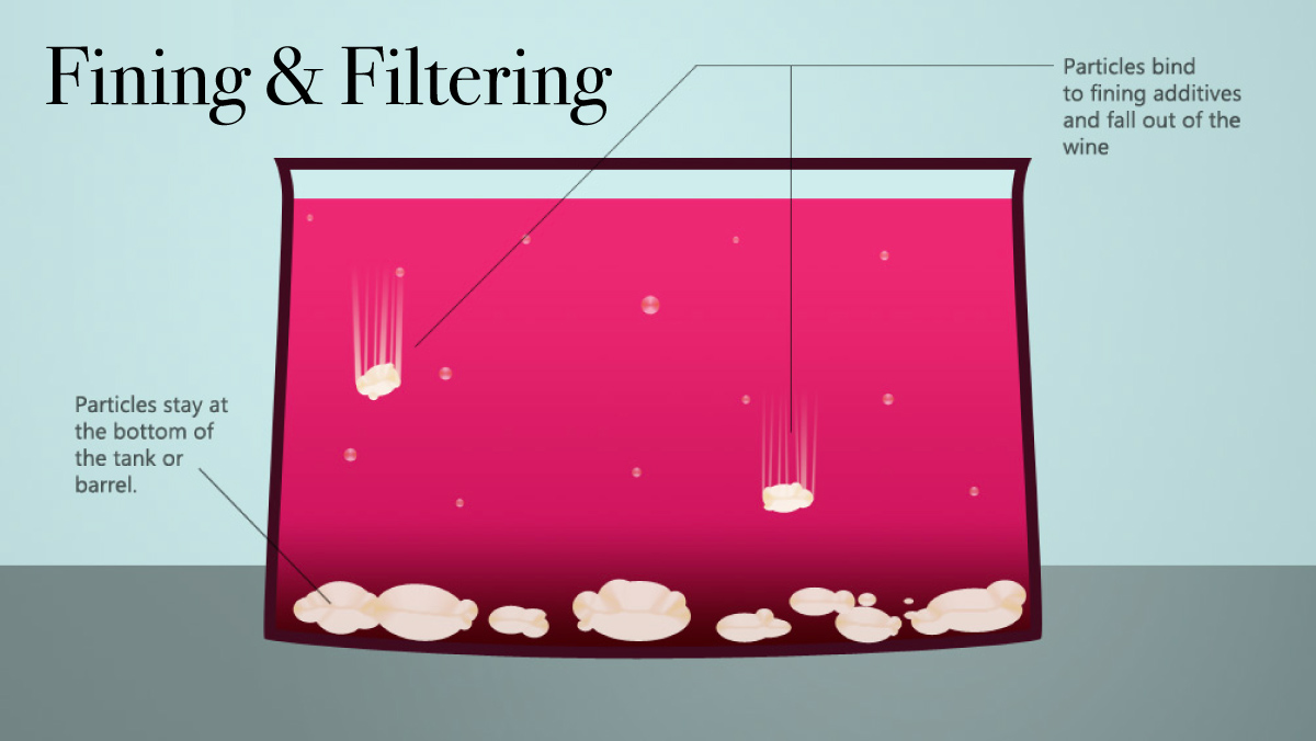fining and filtering in wine