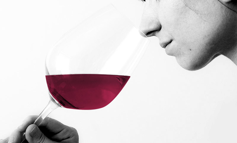 Women Smelling a Glass of Red Wine by Wine Folly