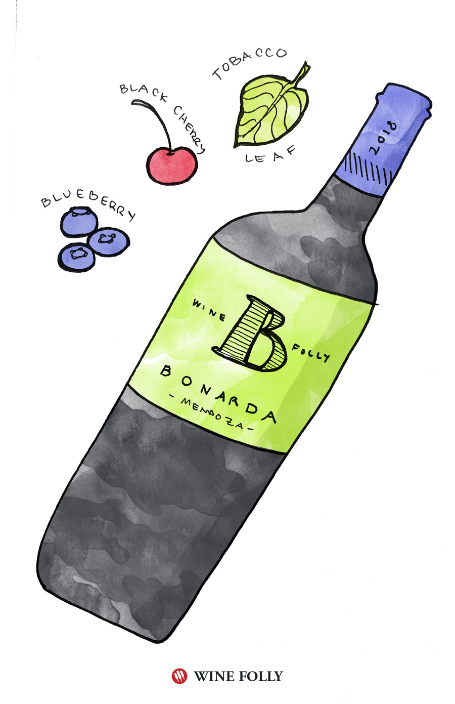 Bonarda Wine Recommendation for Spring Illustration by Wine Folly