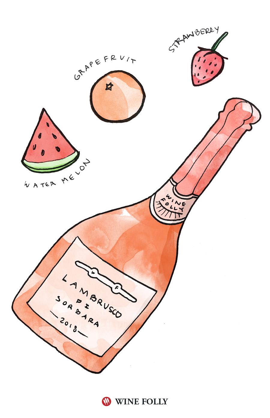 Lambrusco di Sorbara Recommendation Illustration by Wine Folly