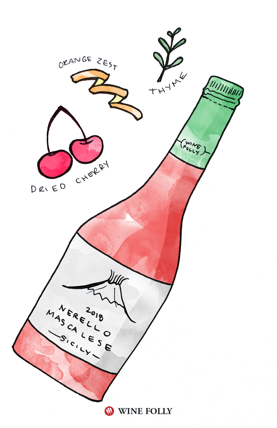 Nerello Mascalese in Spring Illustration by Wine Folly