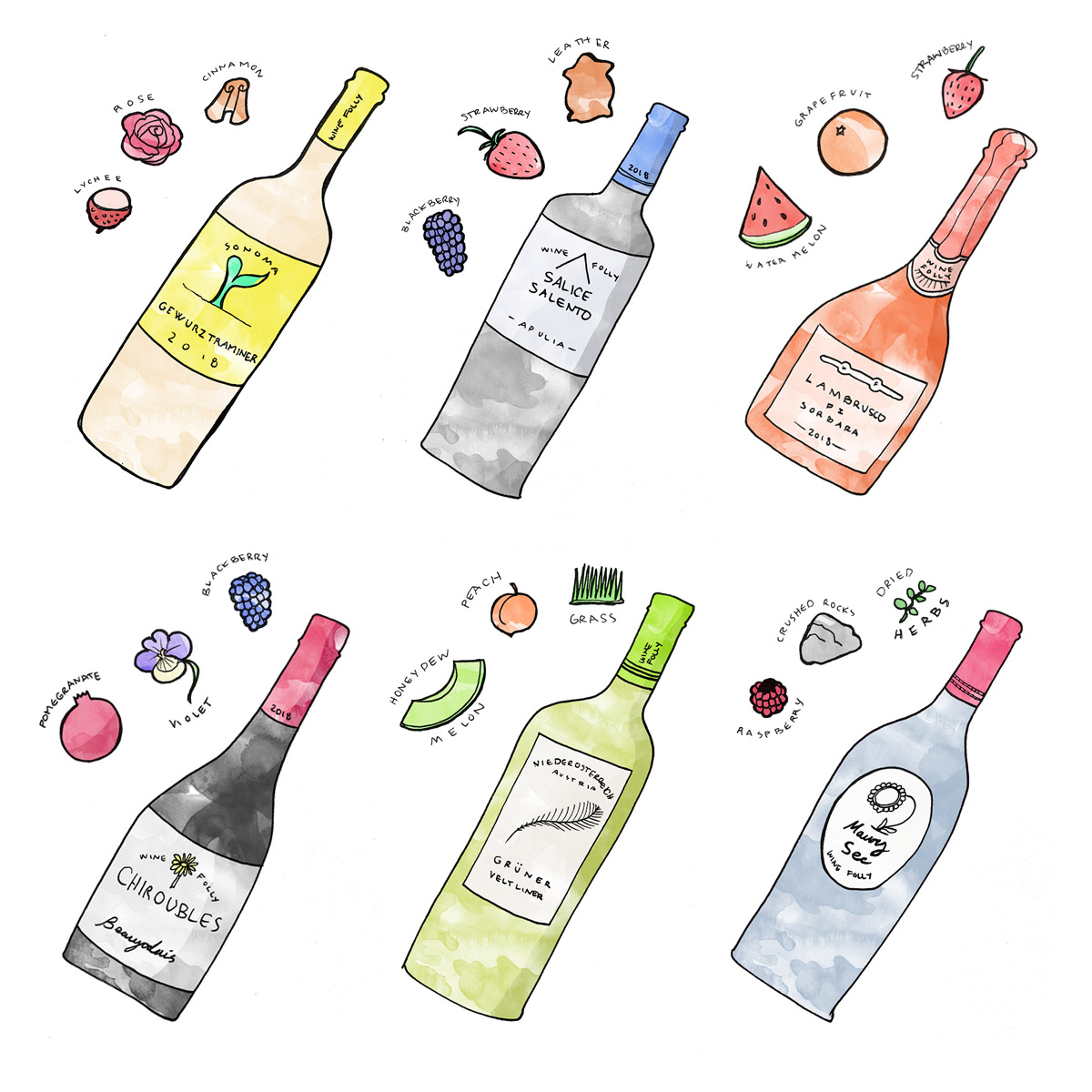 6 Wine Bottles Illustrated with Tasting Notes by Wine Folly
