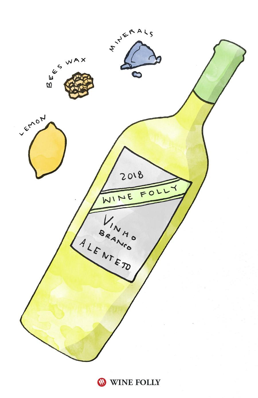 Vinho Branco Portuguese White Wine Tasting Notes Illustration by Wine Folly