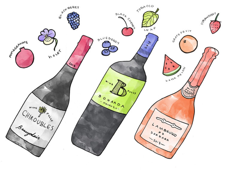 What wines to buy in Spring illustration by Wine Folly