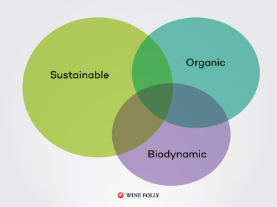 sustainable-organic-biodynamic-wine