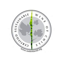 sustainable-wine-chile
