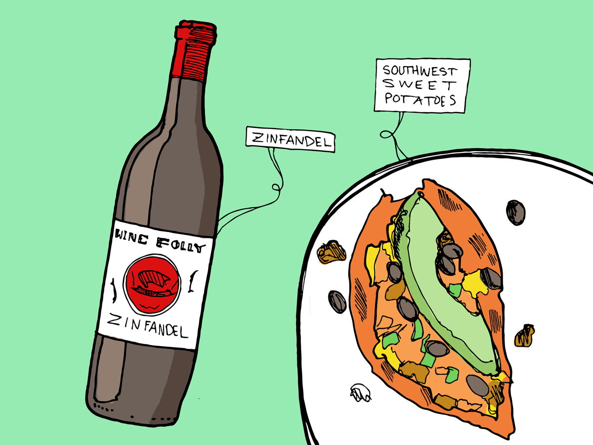 sweet-potato-zinfandel-wine-folly-illustration