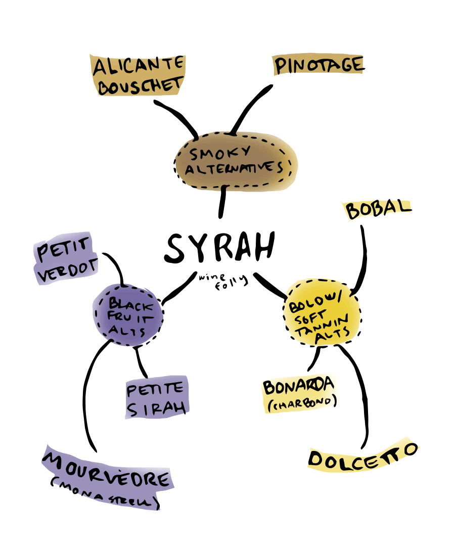 Great Alternatives to Syrah wine - infographic by Wine Folly