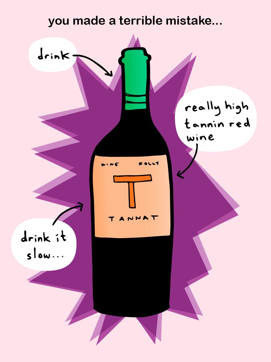tannat-bottle-illustration-winefolly