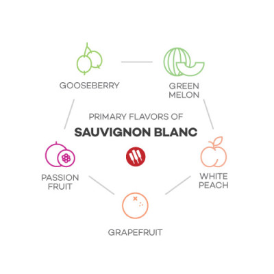 Sauvignon Blanc Taste by Wine Folly