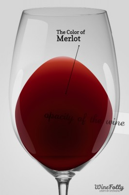 The color of Merlot in a Glass