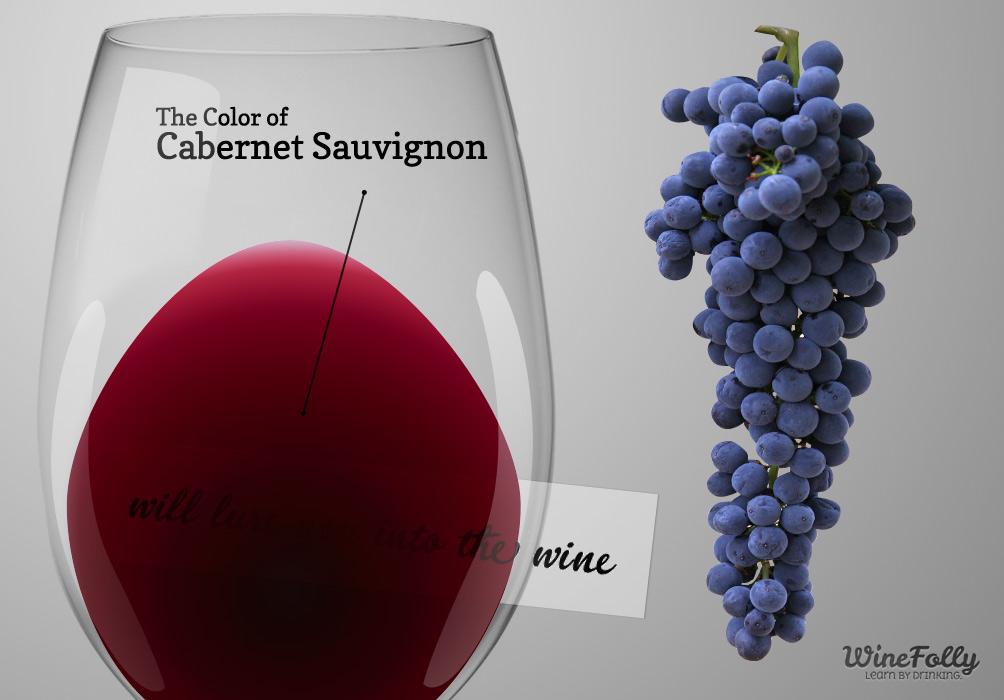 Cabernet Savignon red wine taste and traits