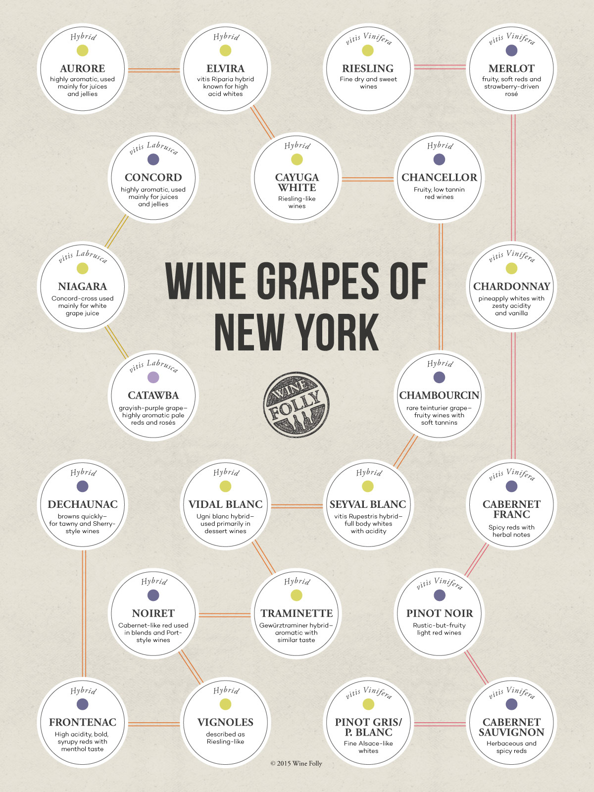 The wine grapes of New York by Wine Folly