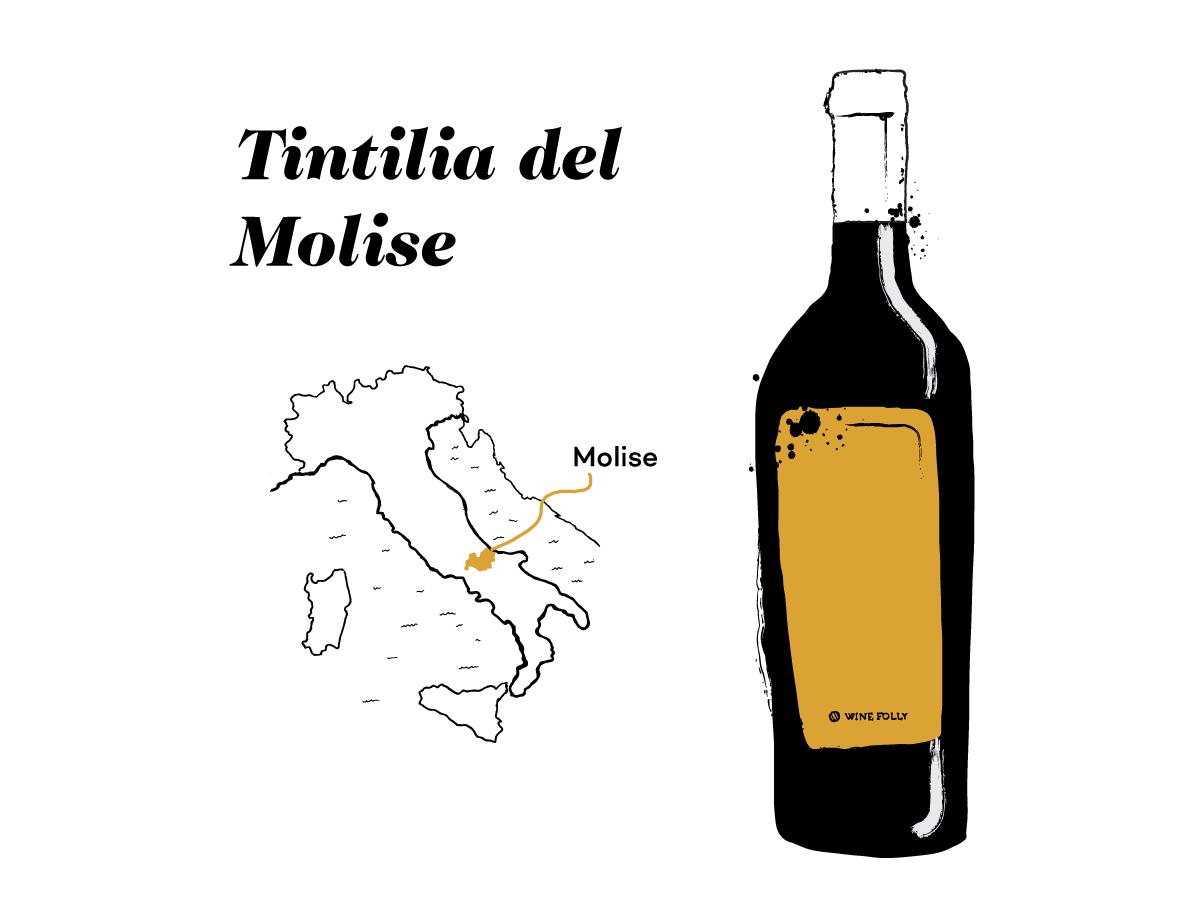 tintilia-molise-illustration-winefolly