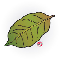 tobacco-leaf-by-wine-folly