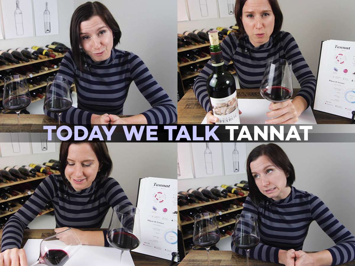 Today we talk Tannat - with Madeline Puckette - Wine Folly