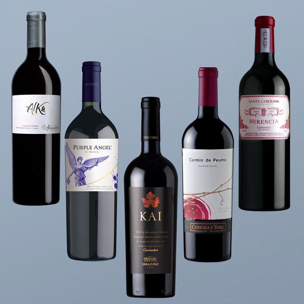 top-rated-carmenere-wines-best