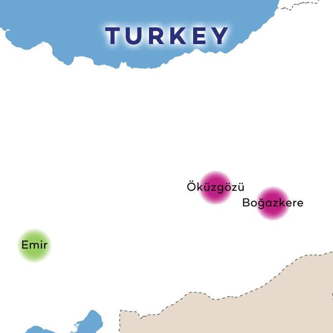 Eastern Turkey Wines on Map