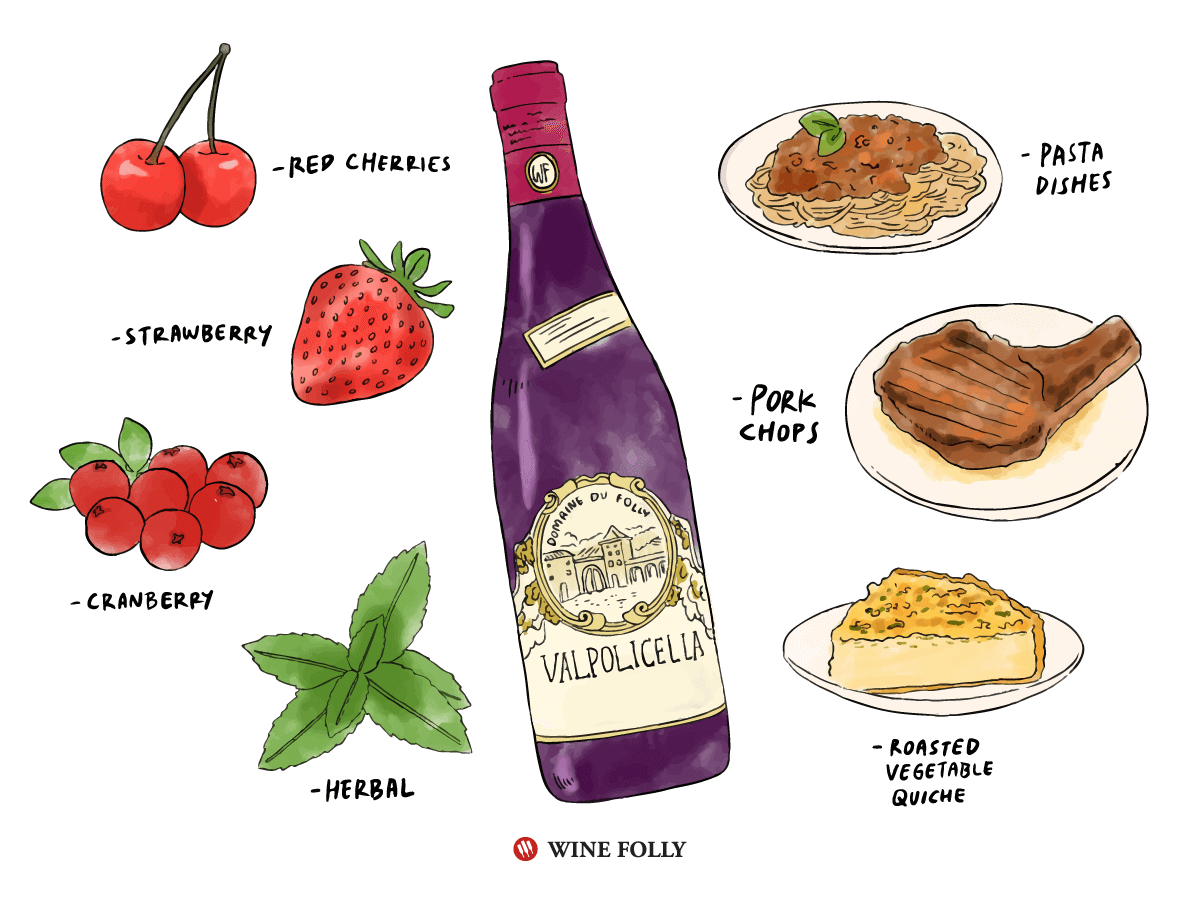 Illustration of Valpolicella with flavors and food pairings.