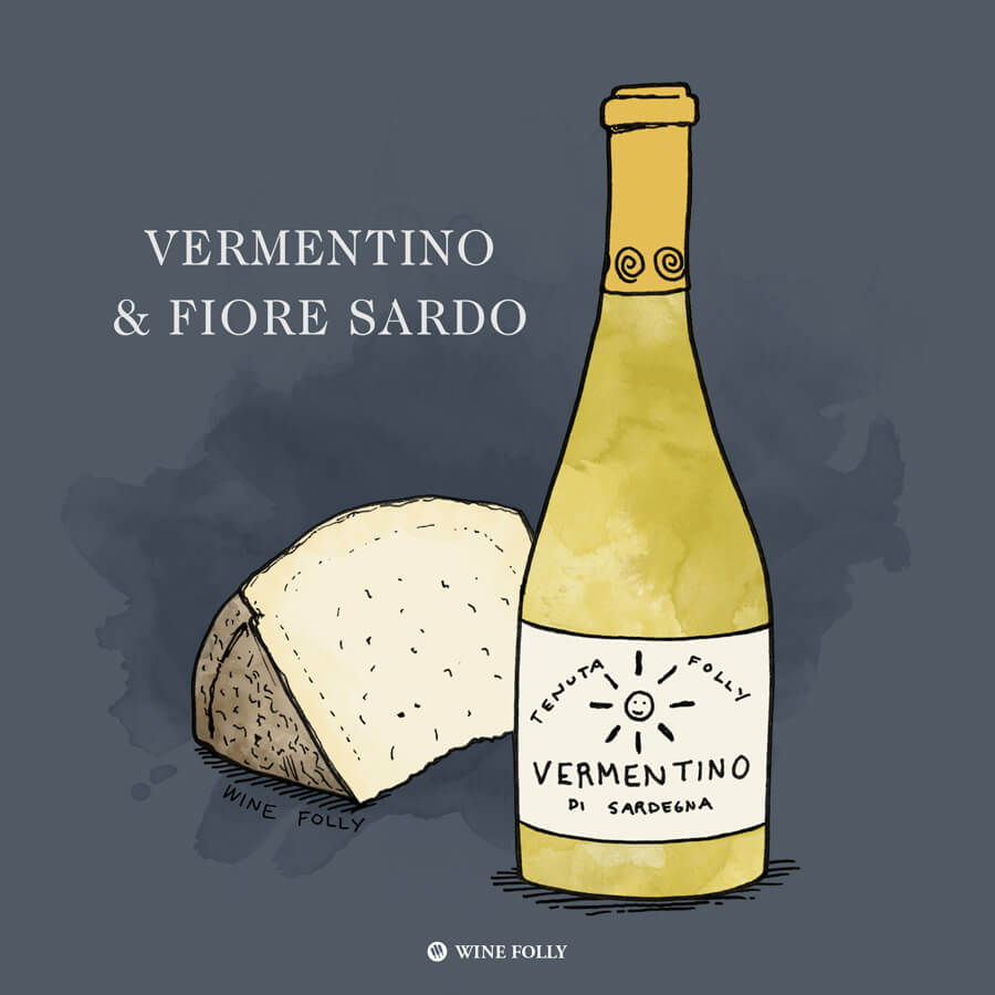 vermentino-fiore-sardo-cheese-pairing-winefolly-illustration
