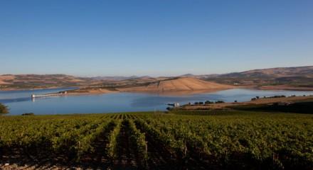 view-from-catena-ulmo-planeta-wines