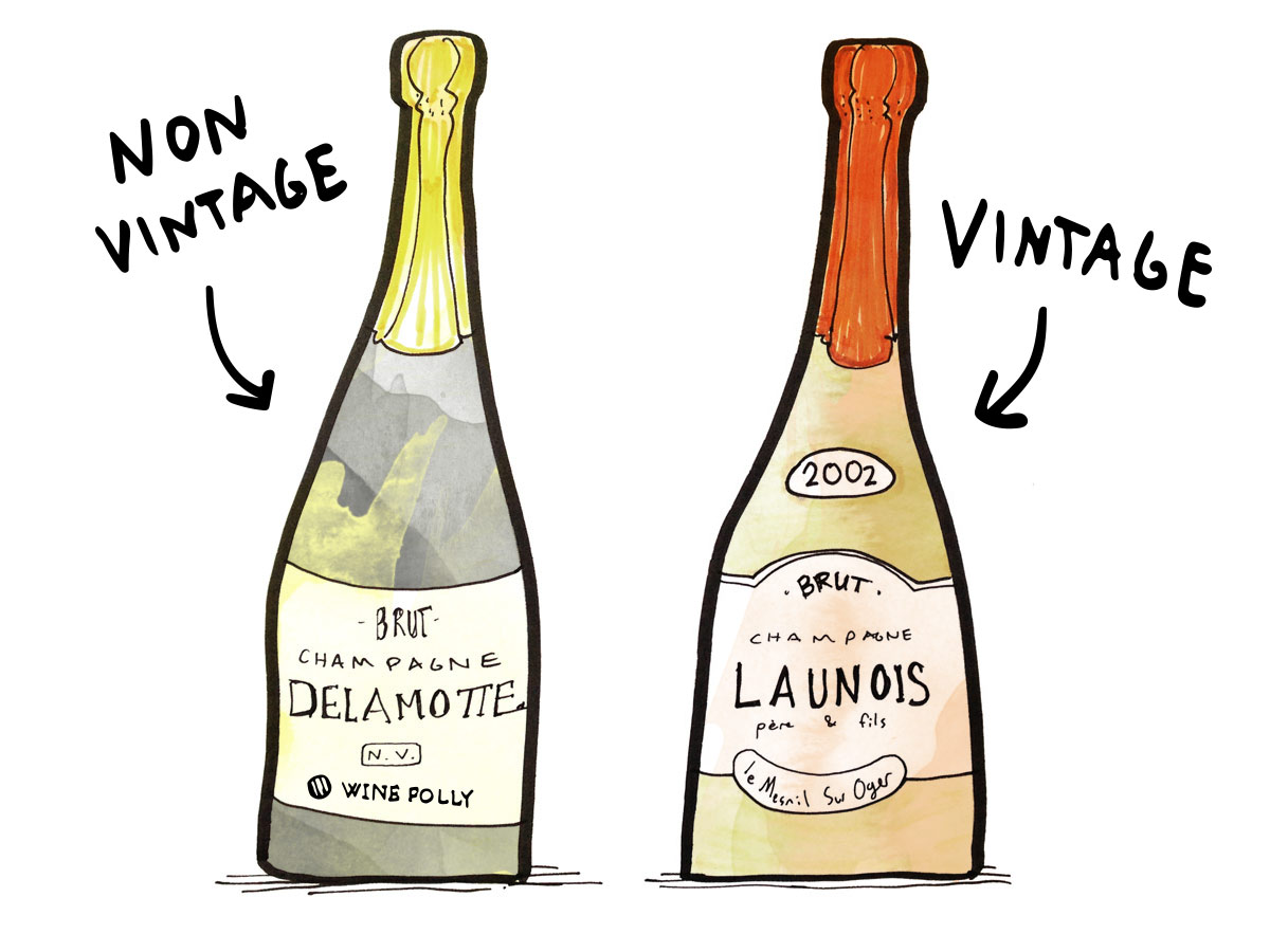 Non-Vintage NV vs Vintage Champagne - Illustration by Wine Folly