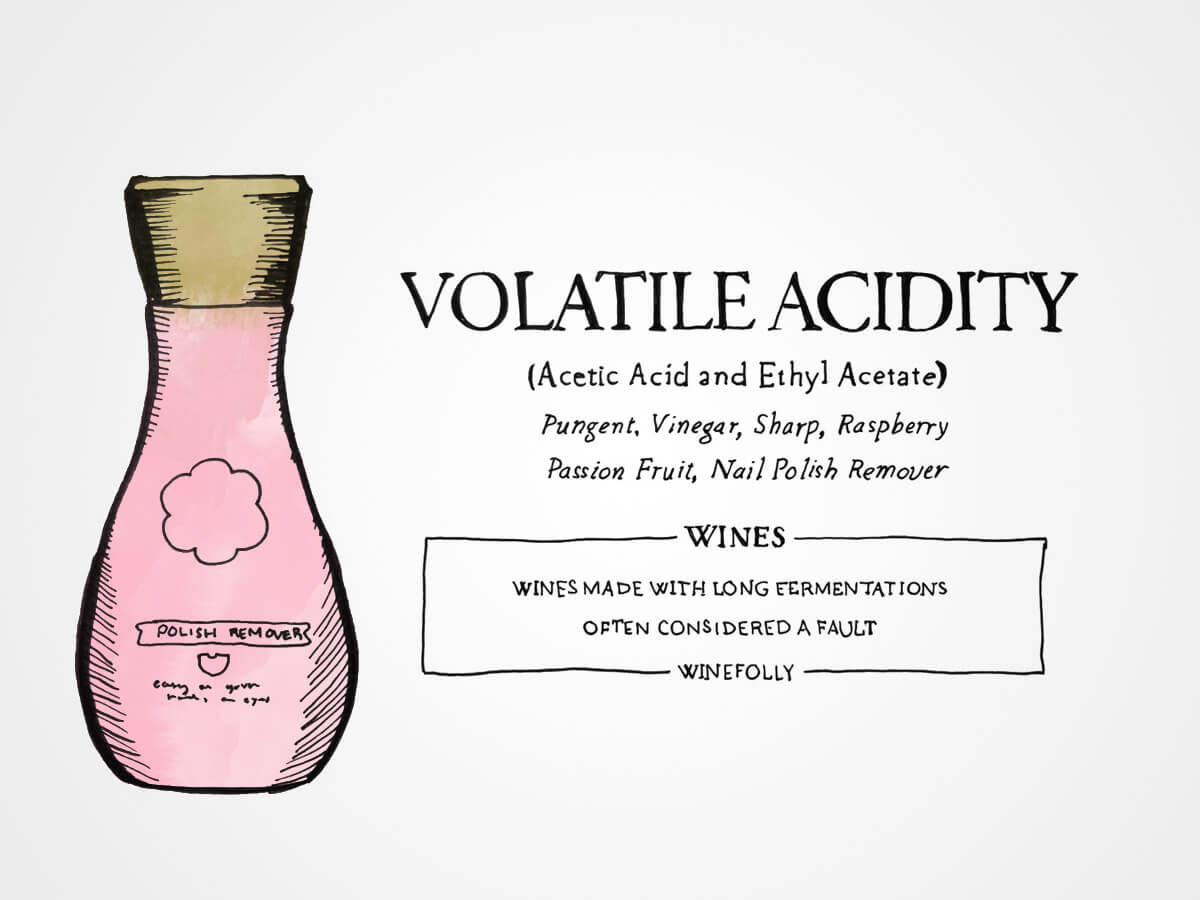 volatile-acidity-winefolly-illustration