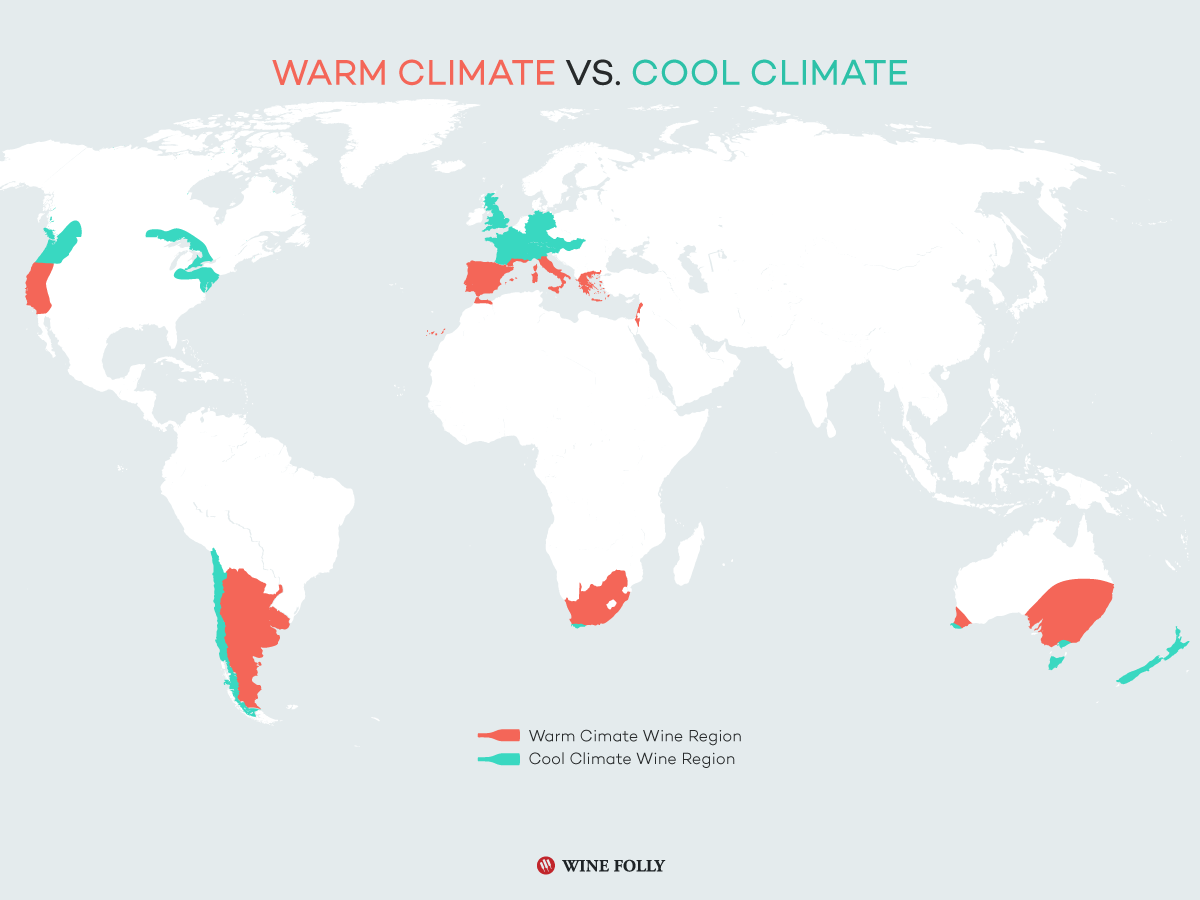 Warm Climate vs. Cool Climate wine regions
