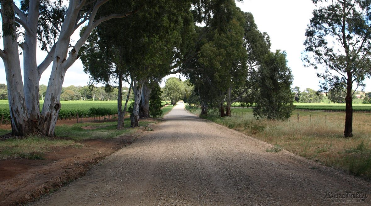 welcome to barossa valley wine country
