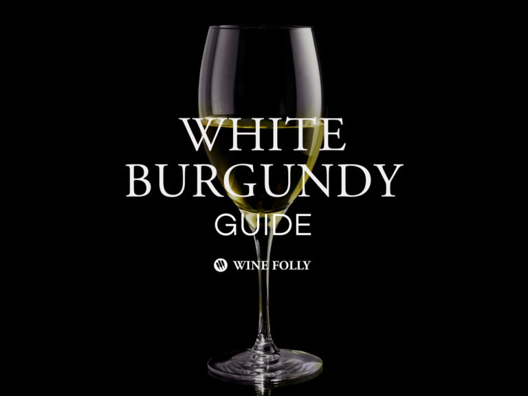 A Guide to White Burgundy, A French Chardonnay by Wine Folly
