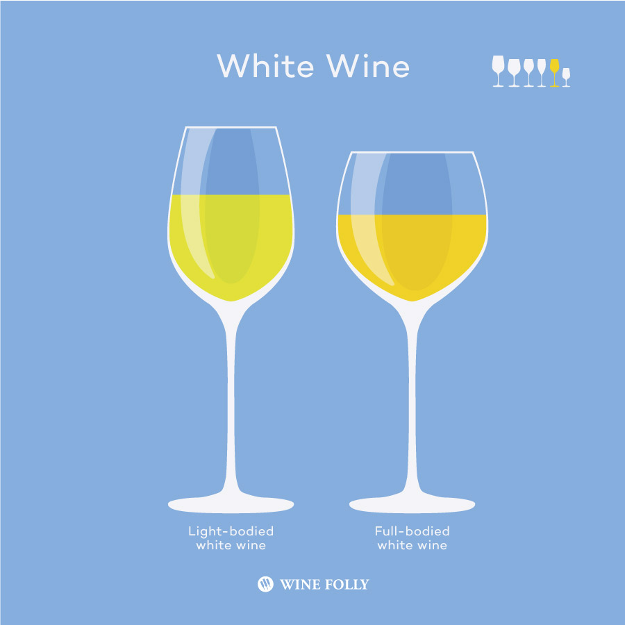 Types of white wine glasses by Wine Folly