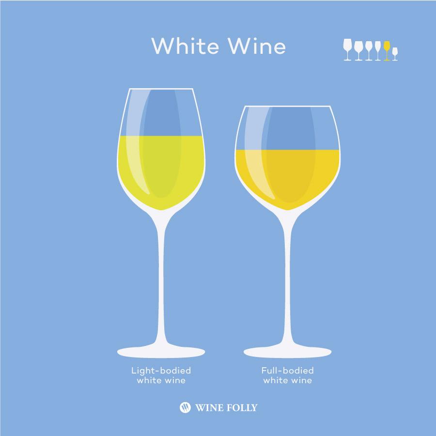 Wine Folly的白葡萄酒杯的类型