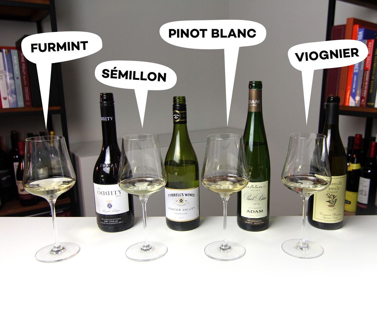 Bottles of dry Furmint, Sémillon, Pinot Blanc and Viognier - Wine Folly
