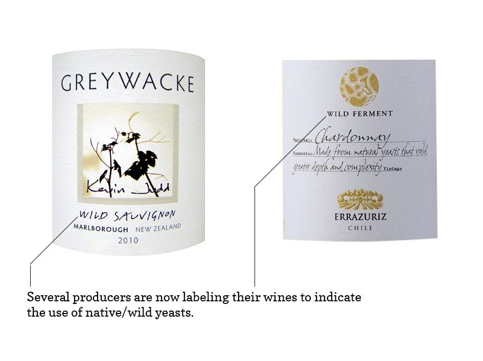 Wild Yeast Label Wines