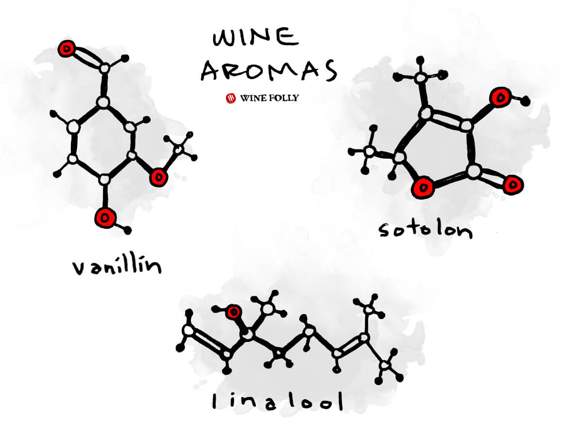 wine-aroma-molecules-examples-illustration-winefolly
