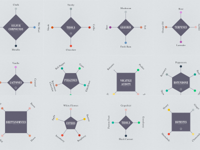 Where Wine Aromas come from