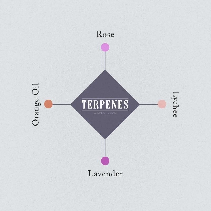 wine-aromas-terpenes