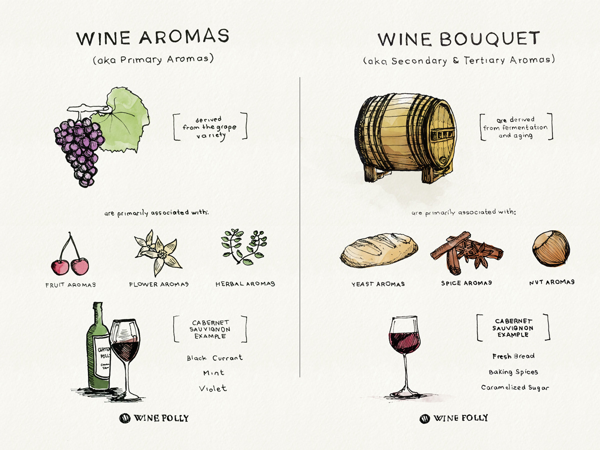The terms wine aroma