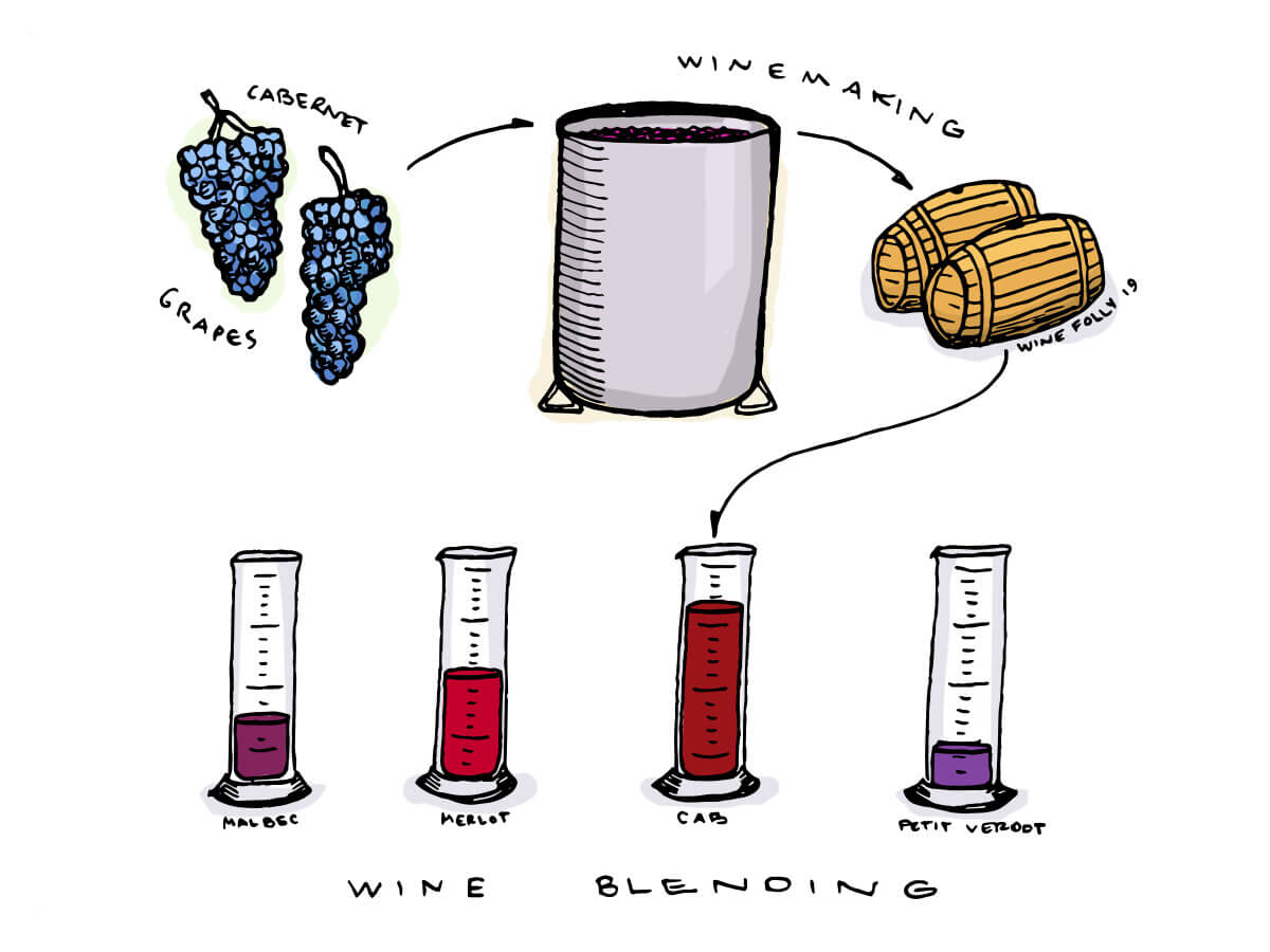 Wine Blending - Wine Folly Illustration