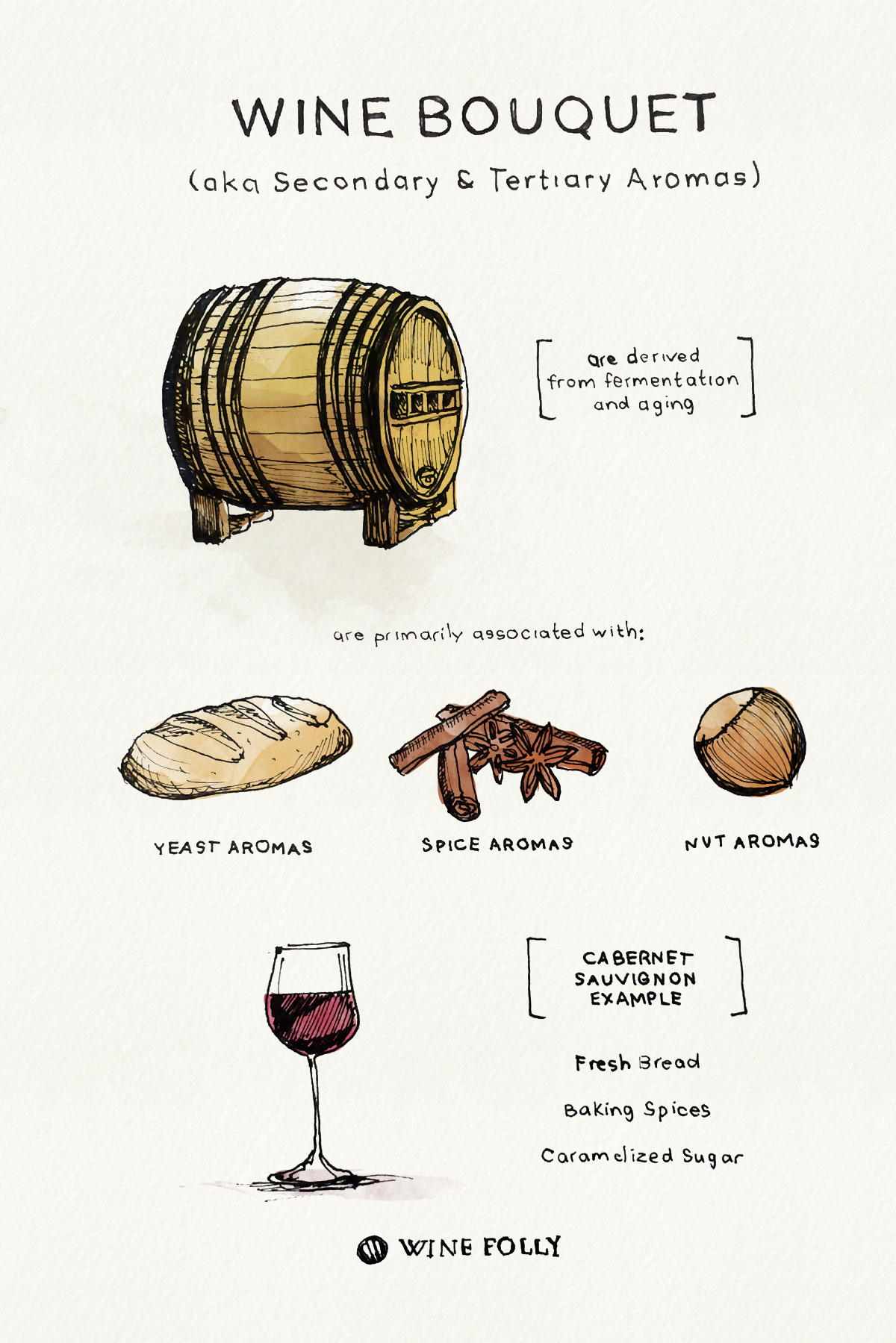 Wine Bouquets - secondary and tertiary aromas - drawing by Wine Folly