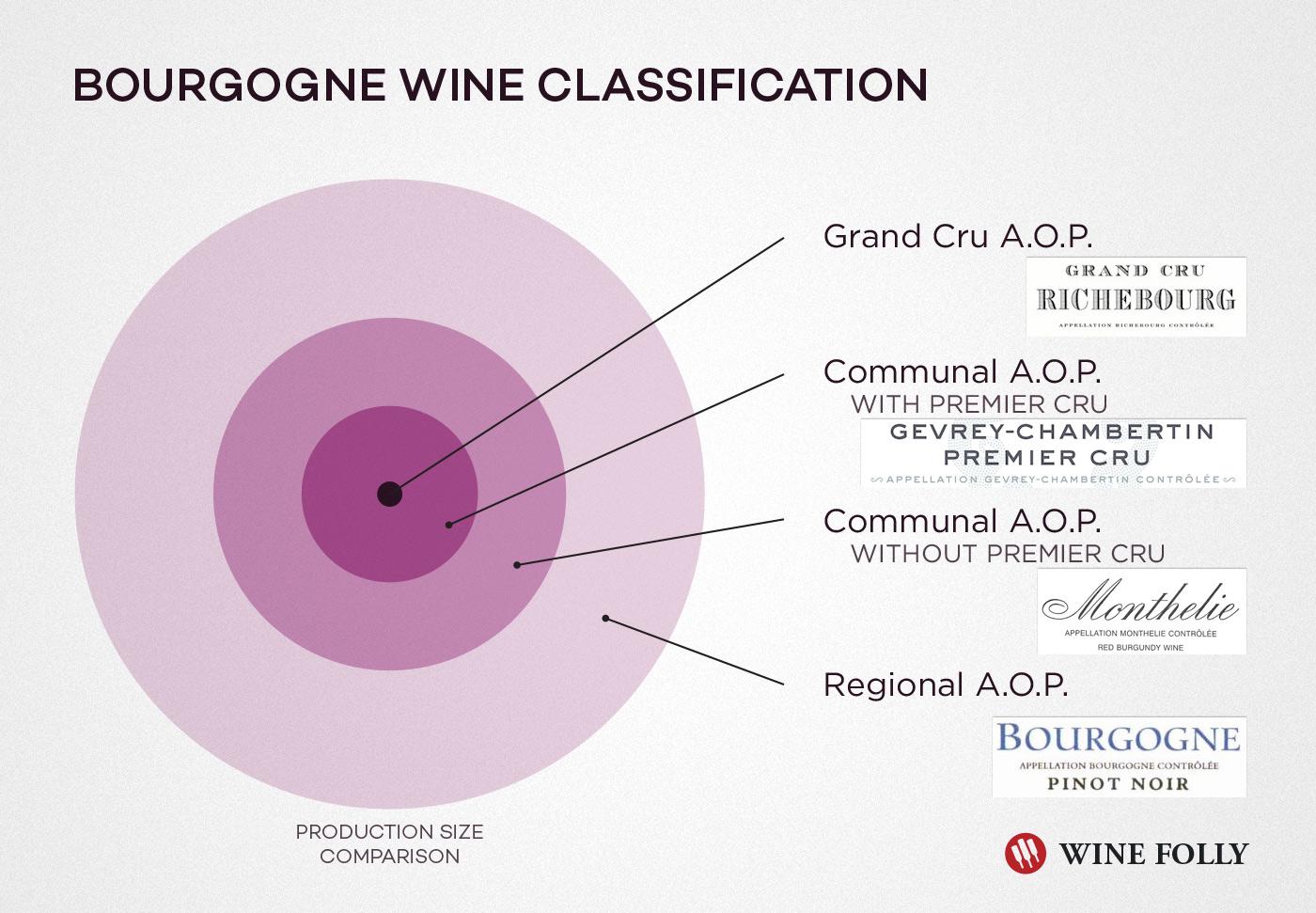 Bourgogne Wine Classification System Appellation AOP