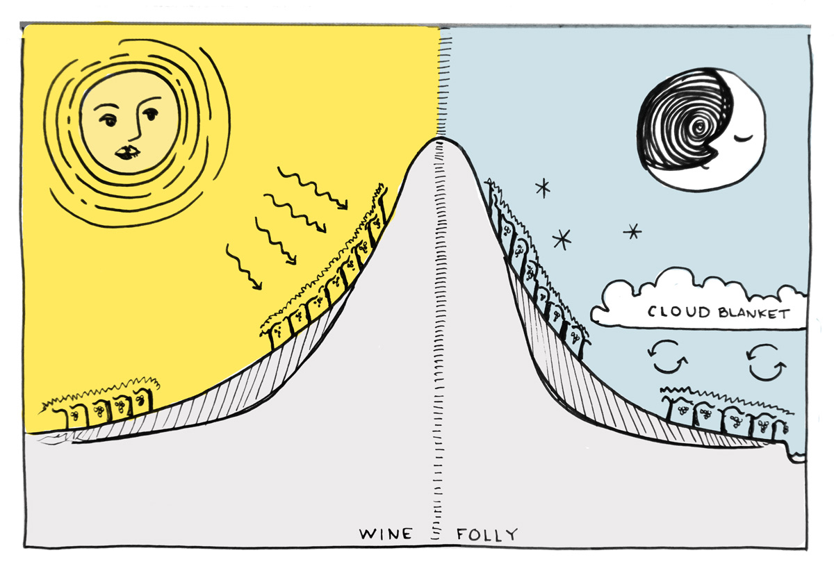 wine-climate-elevation-chart-folly