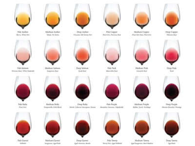 Wine Color Chart Excerpt